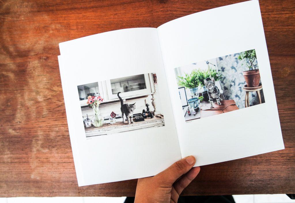Instagrammar books